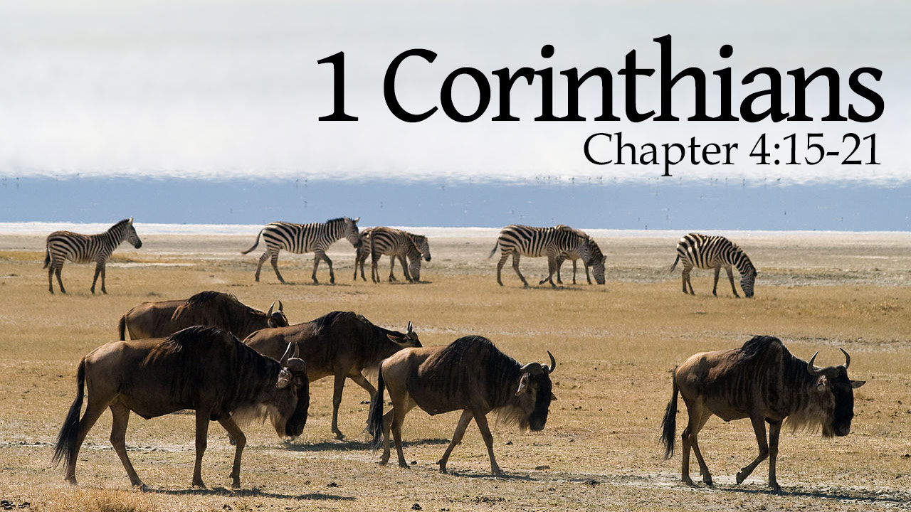Featured HD 1Corinthians 4 15 21